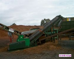 MS50 Resizing Redgum Chips At Sawmill