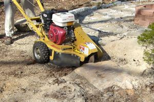 13HP Stump Grinder